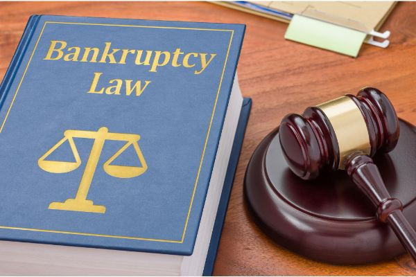 The Bankruptcy Code For Laypersons